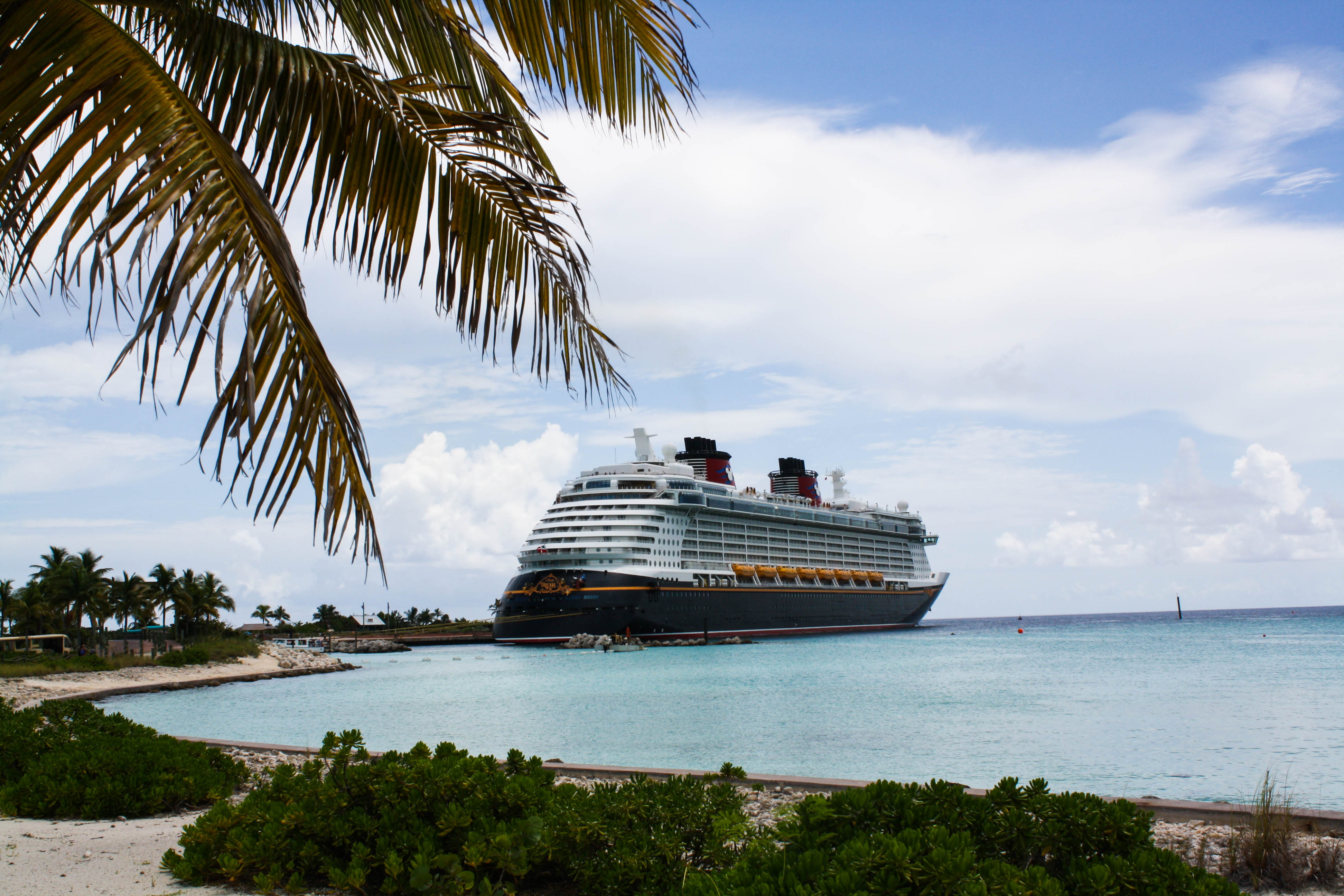Disney Cruise Line - the Good, the Bad, and the Ugly ...